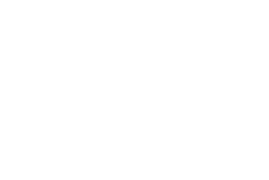 Swarovski Crystal