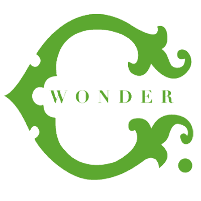 C. Wonder